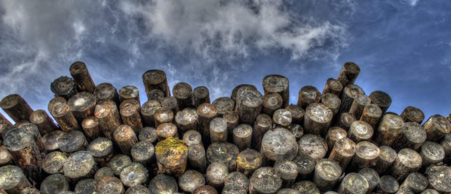 Avantage du bois